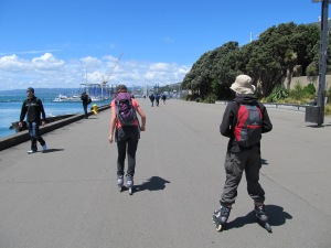 Wellington - what 's not to like on a sunny day, blading along the wa