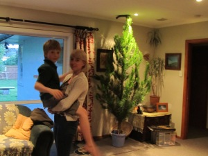 We also found time to install a Christmas tree too this weekend.Charlie still gets picked up!